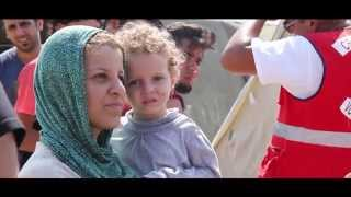 Download Red Cross of Serbia is supporting immediate humanitarian needs of migrants Video