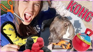 Download Trying To Destroy Indestructible Dog Toys! Video