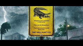 Download Crawl (2019) - Movie Trailer Video