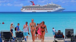 Download The Best Cruises From Four Major Cruise Lines Video