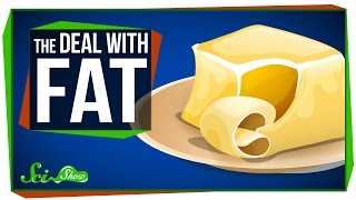 Download The Deal with Fat Video