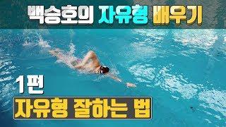Download SHC 수영 [1편] 자유형 잘하는 법 백승호의 자유형배우기 Video