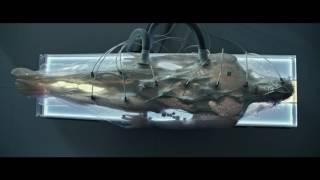 Download [에이리언: 커버넌트] A.I 월터의 탄생 (2017.05.09) Video