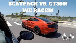 Download Challenger ScatPack Vs. Mustang Shelby GT350! WHO'S REALLY FASTER!? Video