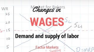 Download Labor Markets - Change in in Equilibrium Wage Rate and Level of Employment Video