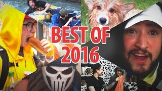 Download BEST OF COW CHOP • 2016 Video