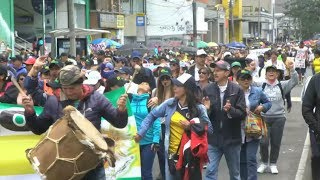Download Hundreds of thousands in teachers' strike across Colombia Video