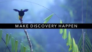 Download Thank You for Making Discovery Possible Video