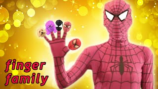 Download Spiderman & Pink Spidergirl Finger Family ★ Real Life Superhero Daddy Finger Song for Kids & Toddler Video