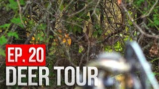 Download GIANT BUCK at 12 YARDS! Public Land Bowhunting - DEER TOUR E20 Video