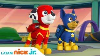 Download ¡Salvando a Apollo el Super Cachorro!   Paw Patrol   Nick Jr.   América Latina   Español Video