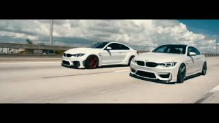 Download BMW - M Power Lovers HD Video