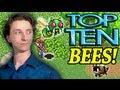 Download Top Ten Bees in Video Games! - ProJared Video