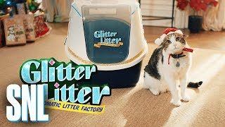 Download Cut for Time: Glitter Litter Automatic Litter - SNL Video