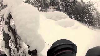 Download snow surf 2015 Video