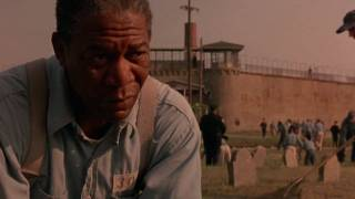 Download ″I guess I just miss my friend″ - The Shawshank Redemption (HD) Video