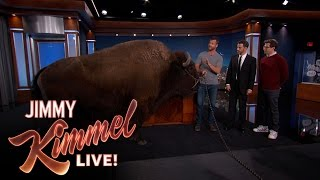 Download Wild Animals with Dave Salmoni & Andy Samberg Video