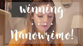 Download VLOG: NANOWRIMO WEEK 4 | HITTING 50k WORDS! | The Book Belle Video