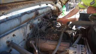 Download 1962 Dodge 100 First Start In 25 Years Video