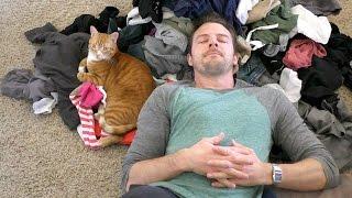 Download Cat People Will Understand... Video