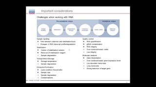 Download RNA Integrity and Quality – Standardize RNA Quality Control Video