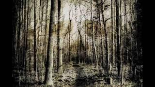Download Eluveitie - Memento Video