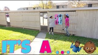 Download IT'S A..... GENDER REVEAL!! Video