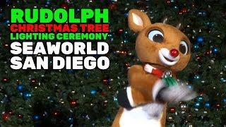Download Rudolph the Red-Nosed Reindeer Christmas tree lighting ceremony at SeaWorld San Diego 2016 Video