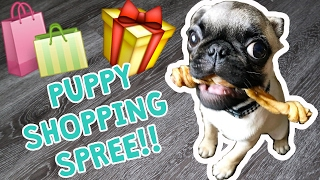 Download EPIC PUPPY SHOPPING SPREE!! Video