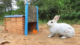 Download Technique Rabbit Trap Using Old Bricks With Flat Wood Video