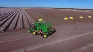 Download Australian Cotton Harvest 2016 Video