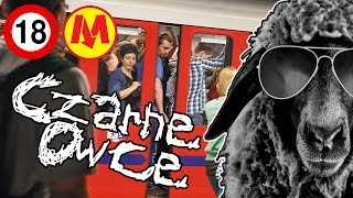 Download Sytuacje w metrze, diss na SIŁOWNIE, wegetarianie i GRUBASY [CZARNE OWCE] [#38] Video