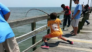 Download Giant Stingray Fishing From Oak Island (Yaupon) Pier! Video