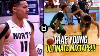 Download Trae Young Is Going To Destroy in College? Ultimate Mixtape Video