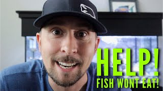 Download They are gonna DIE?! | Jay Wilson Video