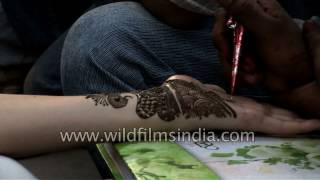 Download Indian girl gets mehndi or henna design applied to her hand Video