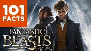 Download 101 Facts About Fantastic Beasts And Where To Find Them Video