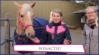 Download WINACTIE, Tessa krijgt nieuwe zadels! * Hart voor Paarden * Video