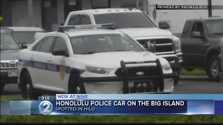 Download HPD patrol car spotted in Hilo Video