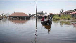 Download Nigeria flood update: Red Cross supports 300,000 people affected Video