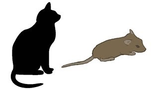 Download CAT GAMES - MOUSE HUNT (FOR CATS ONLY) Video