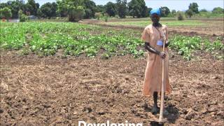 Download Comparing Developed And Developing Nations Video