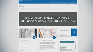 Download FAOSTAT: the world's largest database of food and agriculture statistics Video