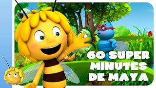 Download Maya l'abeille - compilation de 60 super minutes Video