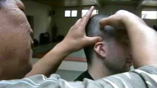 Download Baji Quan post training massage (part 1) Video