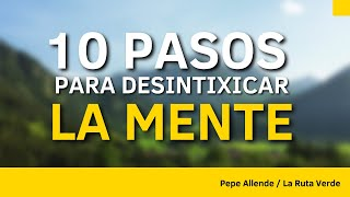 Download 10 PASOS PARA DESINTOXICAR LA MENTE - LaRutaVerde Video