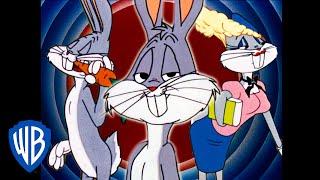 Download Looney Tunes en Español Latino America   Las Múltiples Facetas del Pato Lucas   WB Kids Video