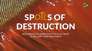 Download Spoils of Destruction. Indonesian villagers fighting palm oil giants to reclaim their rainforest Video