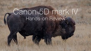 Download Canon 5D mark IV Hands-on Review Video