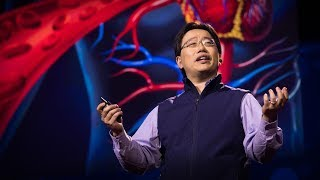 Download A simple new blood test that can catch cancer early | Jimmy Lin Video